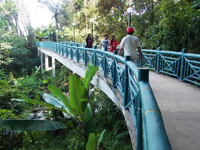 Canopy Walk at Poring